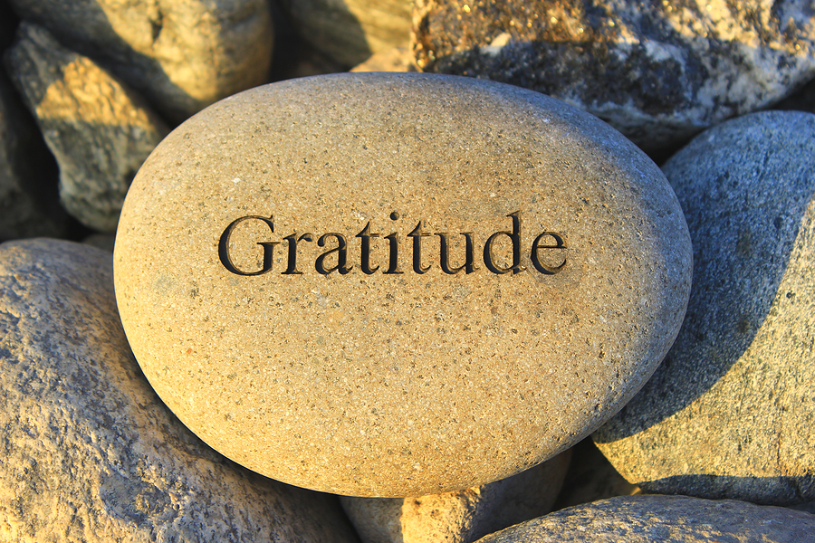 Gratitude download