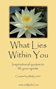 What Lies Within You - Molly Larkin